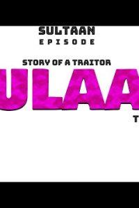 Aulaad Full Punjabi Song Lyrics –Sultaan