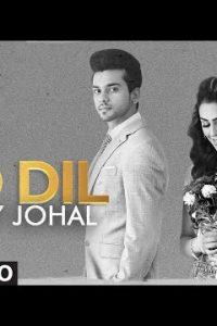 Do Dil Full Punjabi Song Lyrics –Jenny Johal