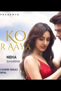 Dil Ko Karaar Aaya hindi song Lyrics–Sidharth Shukla