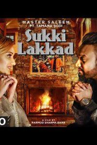 Sukki Lakkad punjabi song Lyrics–Master Saleem