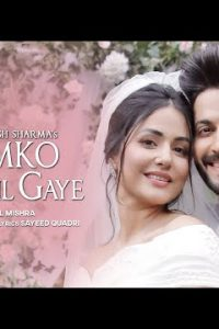 Humko Tum Mil Gaye hindi song Lyrics –Vishal Mishra