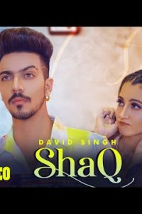 Shaq punjabi song Lyrics–David Singh | Mr & Mrs Narula